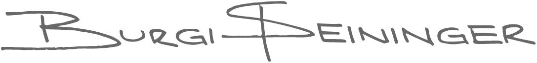 Burgi Steininger Logo